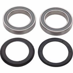 Campagnolo Power Torque bearings